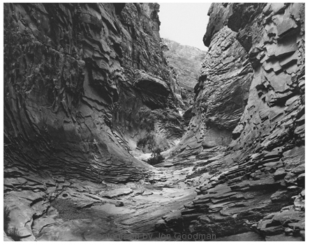 Lone Tree North Canyon, 1991_ dust grain photogravure